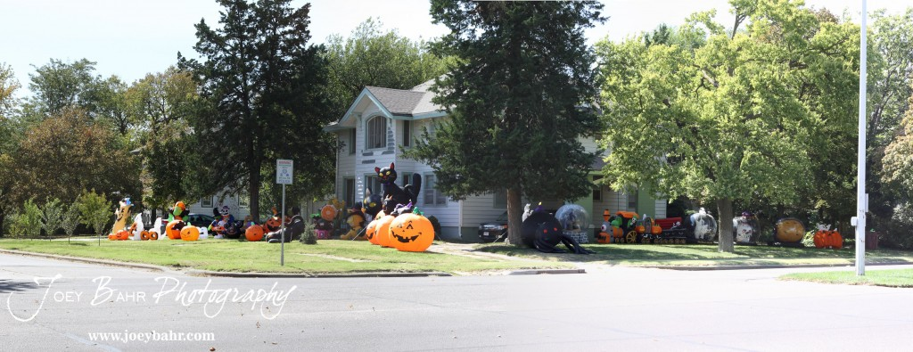Lots of Halloween Inflatables